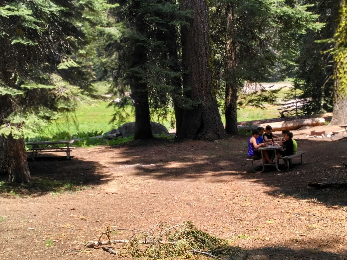 Sequoia National Park - Halstead Meadow picnic area al lado de la carretera cerca de la zona Lodgepool Visitor Center.